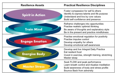 Graphic #2-Resilience Assets-copyright The Resilience Institute
